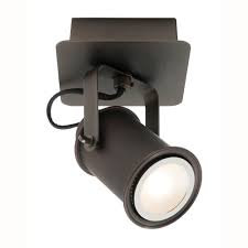 Ryan 1lt LED spotlight
