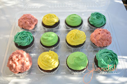 Bright Coloured Cupcakes