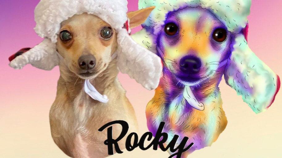 May 2020 - Rocky
