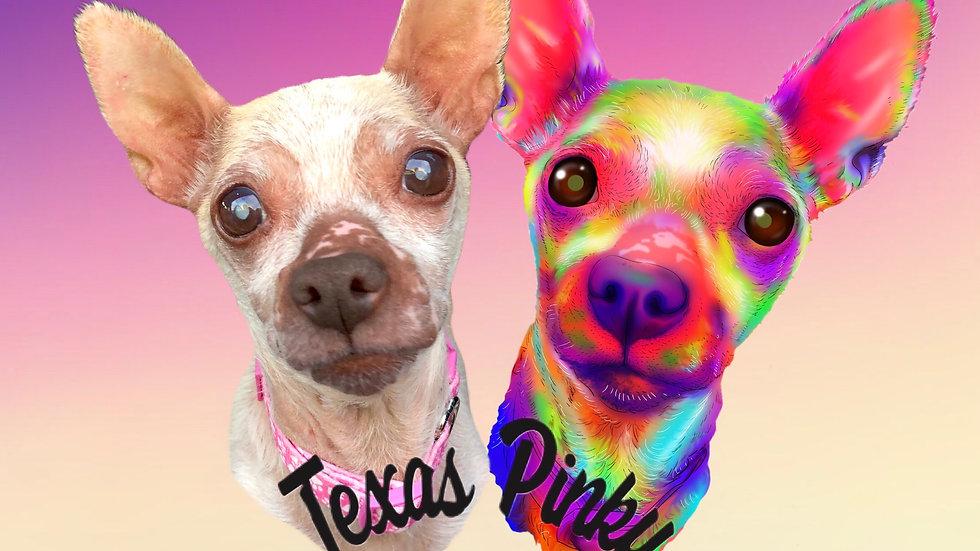 Nov 2019 - Texas Pinky