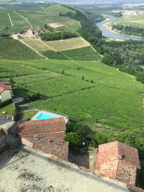 Utsikten från Old Tower i Barbaresco.