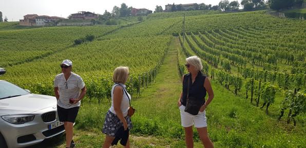 Bensträckare utmed vinfälten i La Morra.
