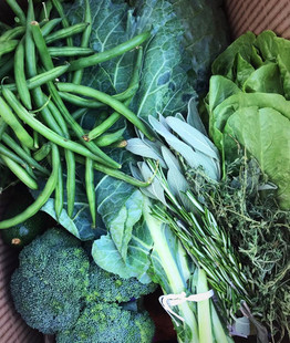 Endlessly Organic