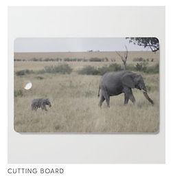 Elephant_mspetit.jpeg