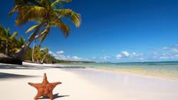 ws_Hot_Beach_1680x1050.jpg