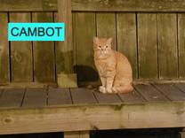 cambot_edited.jpg