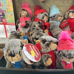 Peluches marmottes