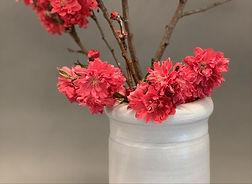 fdpottery-white pottery vase-pink flower