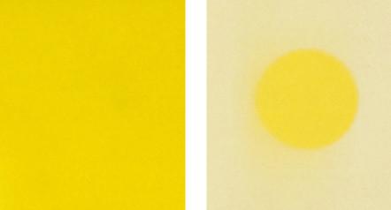 geel01.jpg