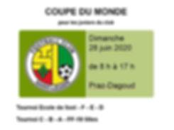 Coupe du monde 2020.JPG