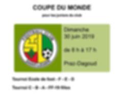 Coupe du monde 2019 - aout 2018.JPG