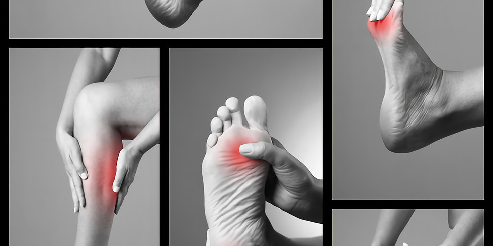 Trigger Point Therapy Workshop