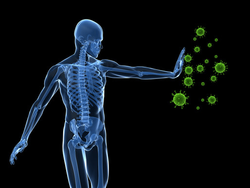How Does Your Immune System Protect You?