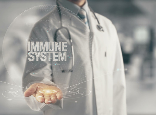 Understanding the 5 Parts of your Immune System
