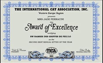 ramses kitten award.jpg
