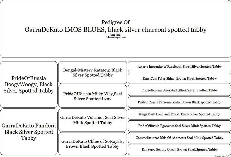 IMOS PEDIGREE.pdf.jpg