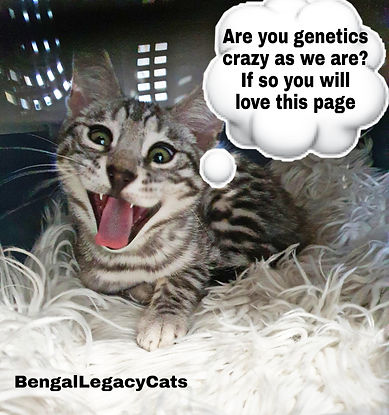 genetics crazy.jpg