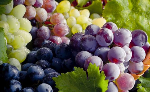 Винограды