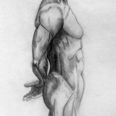 'Écorché III' Graphite on paper Not For Sale