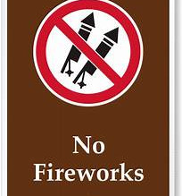 Crackers Ban: Delhi HC will hear on Oct 22, will decide on the storage, sale and use of firecrackers
