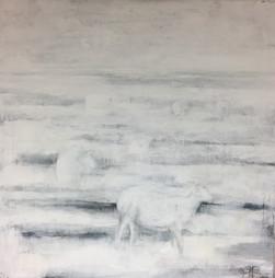 Schafe im Watt
