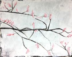 Hamamelis Blüten
