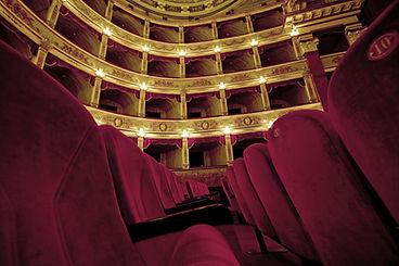 Il teatro, uno dei luoghi dove la nostra associazione organizza puntualmente gli eventi culturali per ogni stagion.