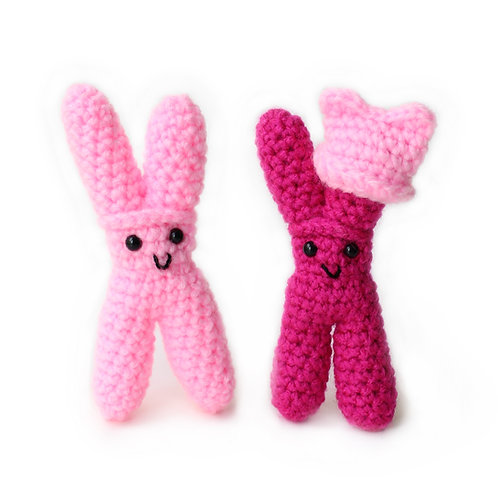 Two X Chromosomes (Set of 2)