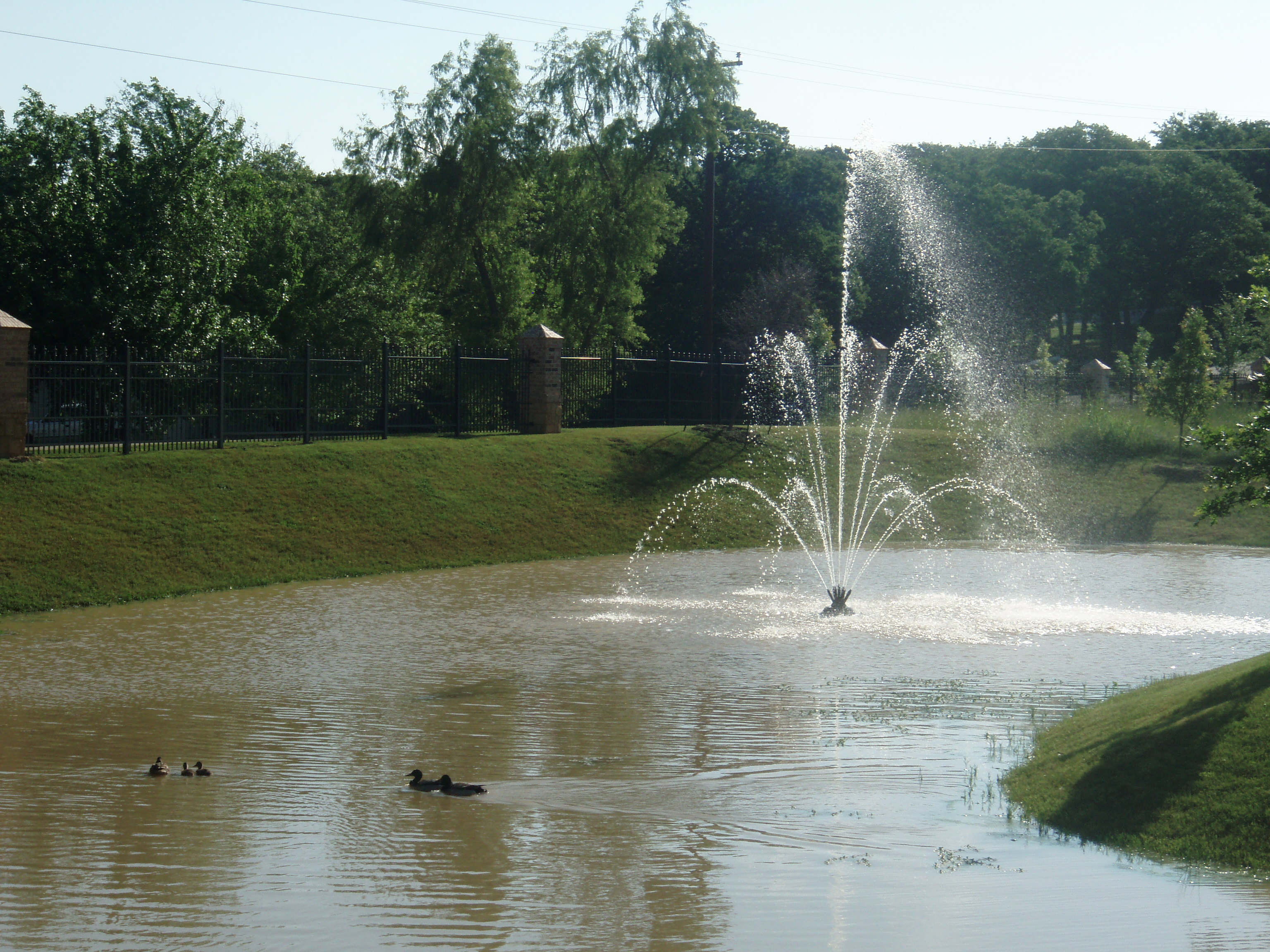 FOUNTAIN POND