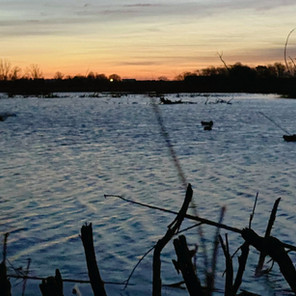 How to Hunt Waterfowl: My First Hunt