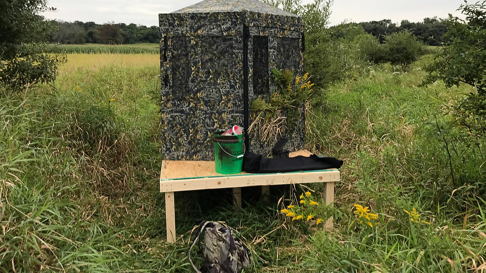 Down and Out hunting blind on top of wood ground blind hunting platform