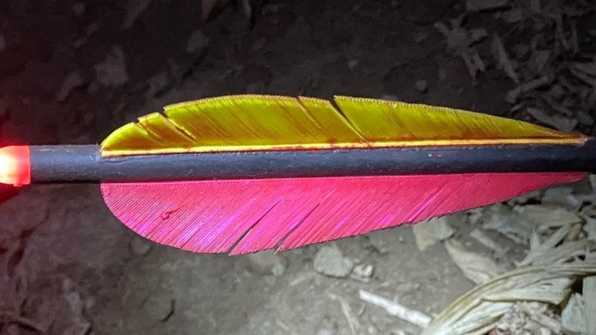arrow with feather fletching and lighted nock with blood on fletching