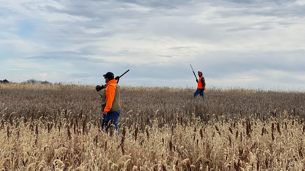 Two hunters in field hunting