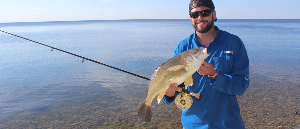 Freshwater Drum on the Fly.jpg