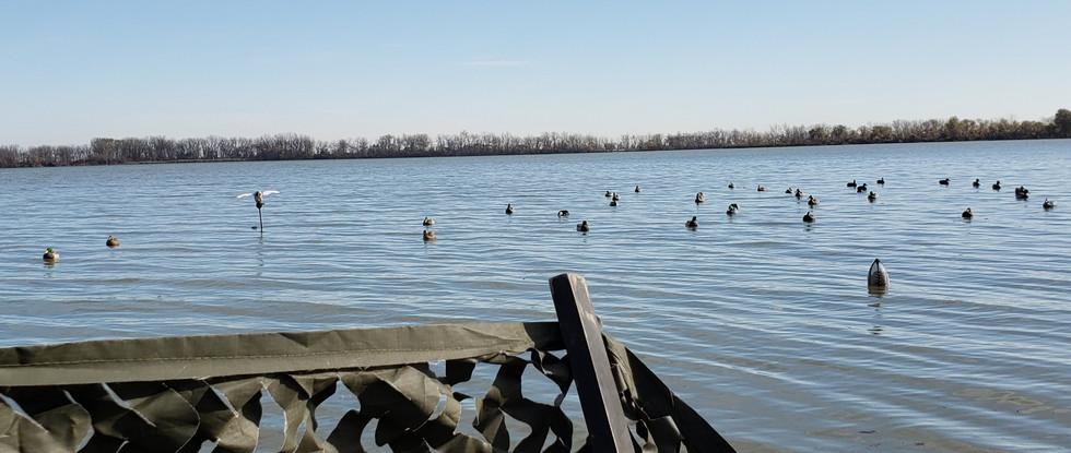Duck Spread