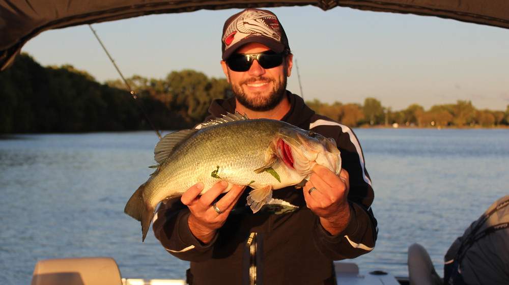 Largemouth bass caught on lee lures flap tail
