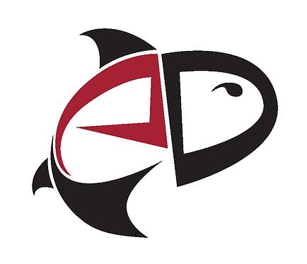 Angling Design DIY Website Design Guide