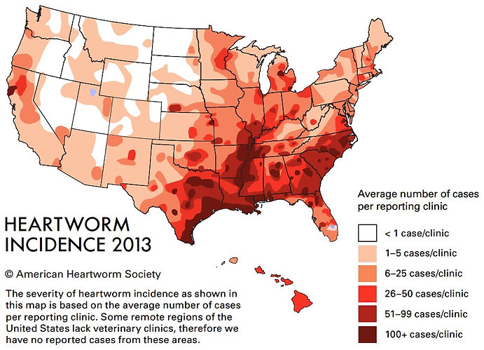Heartworm Incidence 2013