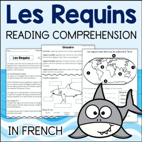 Les Requins FRENCH compréhension de lecture