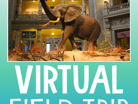 Let's Go On a Virtual Field Trip!