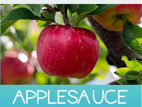 Is it fall yet? Easy Crockpot Applesauce