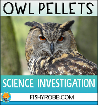 Science Investigation: Owl Pellets