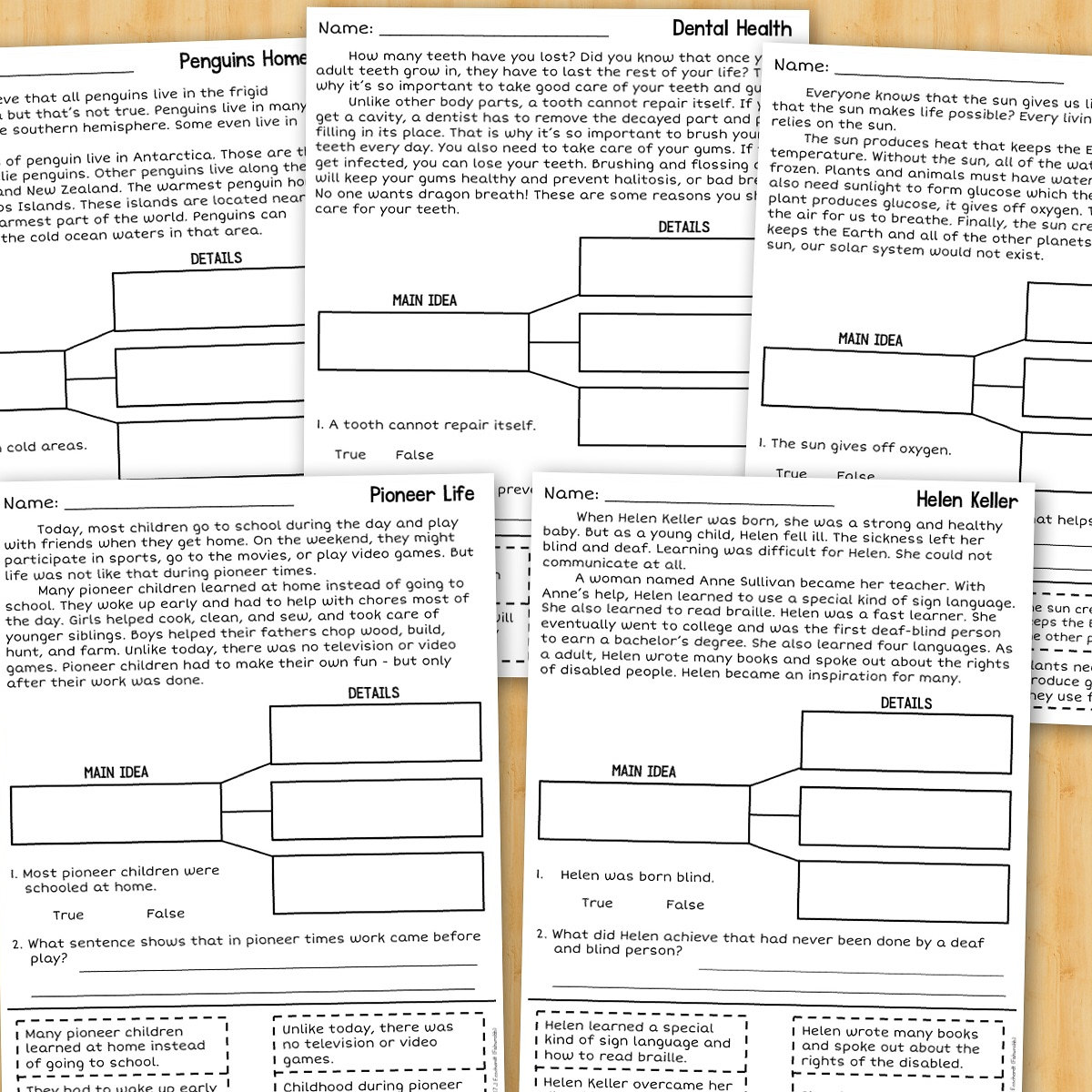 Fishyrobb Teaching Ideas and Resources – Main Idea Practice Worksheets