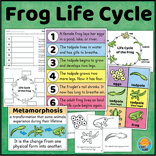 Frog Life Cycle Posters and Worksheets