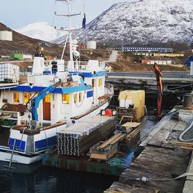 Polar Diver med pram, havnerenovering.jp