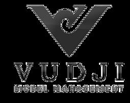 VJ-Logo%2520%25D0%25B4%25D0%25BB%25D1%25