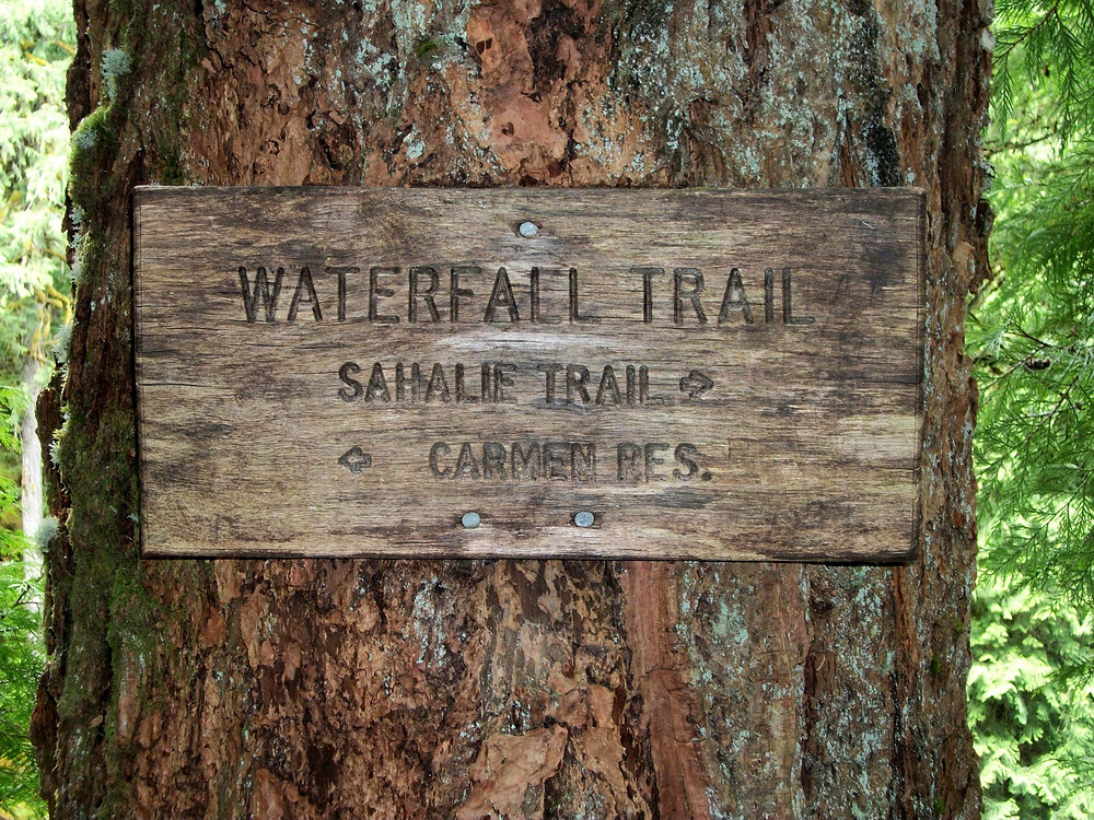 Photo of a trailhead marker symbolizing the decisions company owners and leaders need to make about where their company is headed