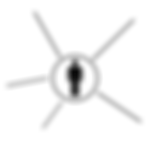Image of single silhouette with lines going away from it to show how Wise Insights coaches individual leaders and executives.