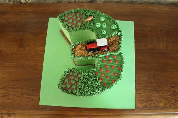 Gâteau d'anniversaire enfant décoré thème tracteur & campagne