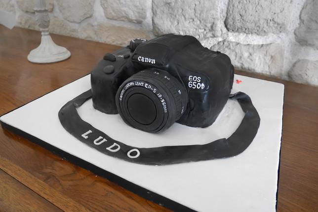 Gâteau pâte à sucre appareil photo